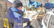 policia miky moco
